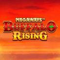 buffalo rising megaways slot logo