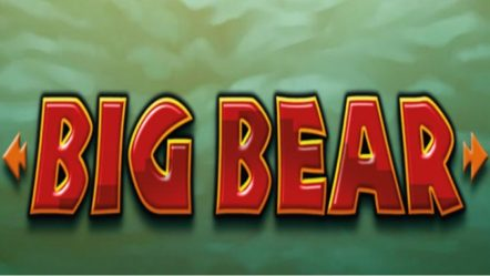Big Bear Slot