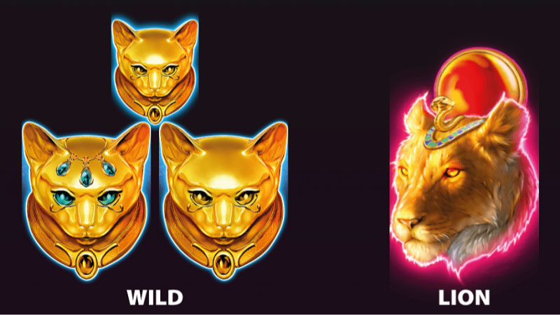 desert-cats-slot-rules