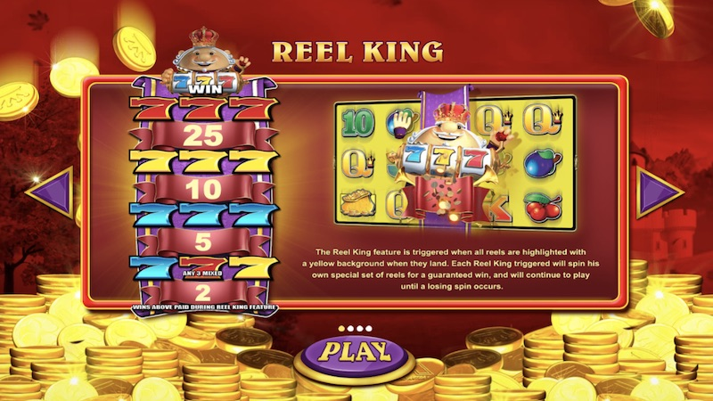 reel king mega slot rules