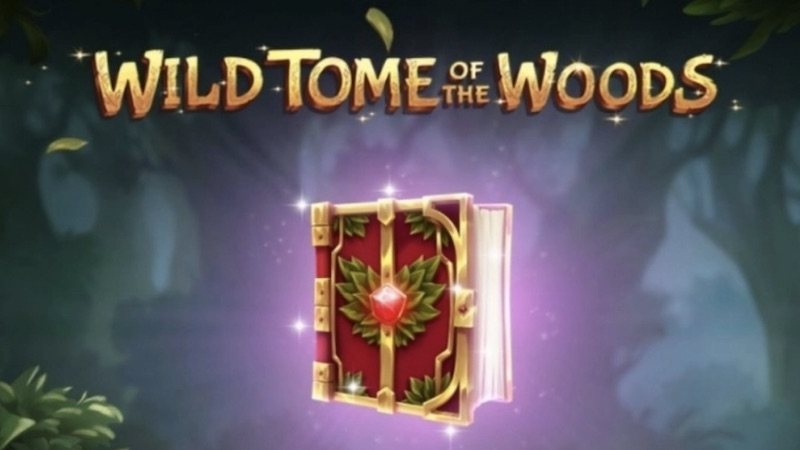 wild tome of the woods slot gameplay